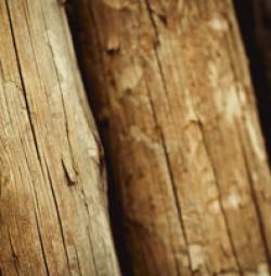 Fa abc, avagy fa minőségi osztályok